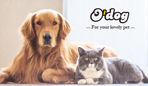 O'Dog Pet Treat